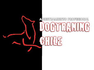 Dogtraining Chile
